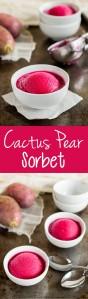 Cactus Pear Sorbet
