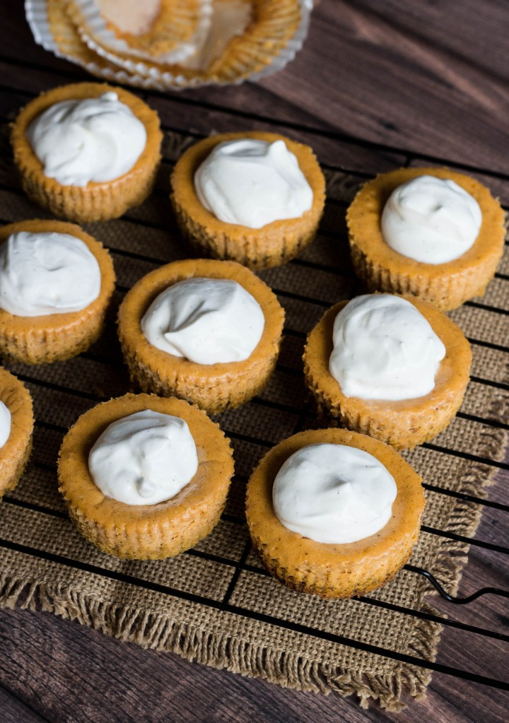 Mini Pumpkin Cheesecakes with Sour Whipped Cream